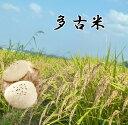 《予約》 加藤さんの多古米 令和2年産 新米 千葉県多古町産 多古米 5kg(白米) 【送料無料】多古米の中でも幻の多古米と言われる東佐野産の多古米!農家自慢のお米です。こしひかり 白米/多古米/多古米 精米【多古米白米】【smtb-TD】【saitama】