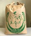 天然の有機質肥料でじっくり育てました特別栽培米つがるロマン玄米20kg(平成30年産)