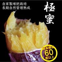 【送料無料】紅はるかさつまいも感動さつまいも5kgS・M・Lサイズ混合焼き芋レシピ付作り方レンジトースター鹿児島県産サツマイモ甘い蜜紅はるか