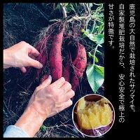 送料無料北海道沖縄別途送料感動さつまいも5kgおまけ付きS・Mサイズ焼き芋レシピ付さつまいも焼いも非冷凍鹿児島県産サツマイモ甘い紅はるか蜜