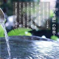 【送料無料】薩摩の奇蹟10L2箱初回購入限定お試し価格鹿児島天然温泉水シリカ水シリカウォーター国産アルカリ温泉水アルカリイオン水硬度0.6ミネラルウオーター薩摩の奇跡さつまのきせき