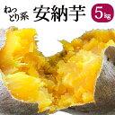 ねっとり系 【予約】 安納芋(鹿児島県産)5kg【送料無料】...