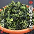 国産乾燥野菜シリーズ 乾燥ほうれん草 100g 熊本県産100%