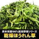 新鮮野菜の食感と甘みが手軽に楽しめる国産100%(熊本県産)乾燥ほうれん草 500g