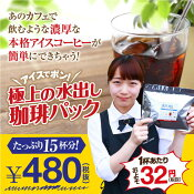 【澤井珈琲】アイスでポン!コーヒー専門店の極上の水出し珈琲パック 5袋入り(コーヒーパック/アイスコーヒー)