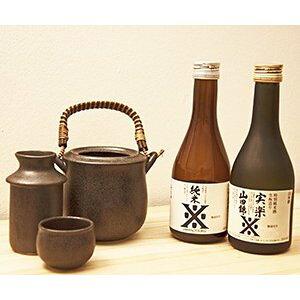 日本酒 ギフト プレゼント 燗酒ことはじめセット300ml×2本セット&燗徳利セット 送料無料