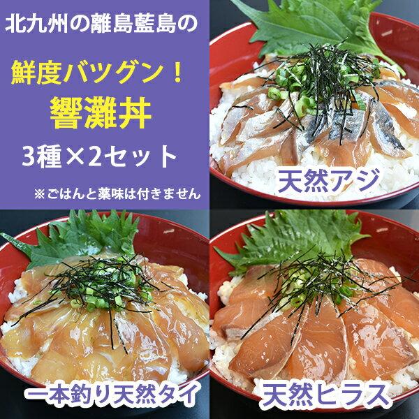 藍島 響灘丼 漬け丼 6食セット 天然(たい・あじ・ひらす)藍島ぶらんど倶楽部