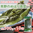 【20日9:59まで5倍】熊野のめはり高菜300g×10袋【国産】【代引き不可】