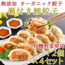 無添加 瀬付き鯵餃子 210g(12個)×4セット【天然魚と有機野菜、オーガニック皮を使……