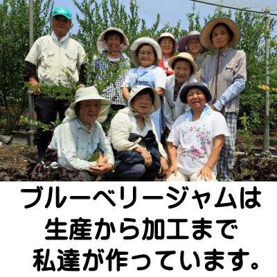 国産・埼玉県日高市産手づくり・無添加ブルーベリ...の紹介画像2