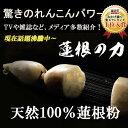 【お得業務用1kg】れんこん100%無添加〜蓮根の力(蓮根粉...