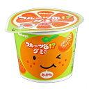 【訳あり】 賞味期限:2020年5月 カバヤ フルーツ缶グミ (50g)