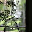 【 iittala・ARABIAキャンペーン対象 】イッタラ アテネの朝 3pセット / iittala Ateenan aamu