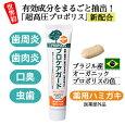 天然プロポリスの薬用歯みがき粉プロケアガード(医薬部外品)