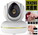 最新小型軽量 業界初高画質2K H265 IPネットワークカメラ/小型防犯カメラ  赤外IPカメラ/WIFI/Iphone/スマホ対応STARCAMPRO2K 人気ランキング