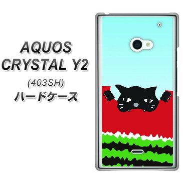 AQUOS CRYSTAL Y2 403SH ハードケース / カバー【IA815 すいかをかじるネコ(大) 素材クリア】 UV印刷 ★高解像度版(アクオスクリスタル ワイツー 403SH/403SHY/スマホケース)