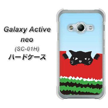 Galaxy Active neo SC-01H ハードケース / カバー【IA815 すいかをかじるネコ(大) 素材クリア】★高解像度版(ギャラクシーアクティブネオ SC-01H/SC01H/スマホケース)
