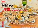 半額 SALE みるくがき Lサイズ 30個 牡蠣 かき 殻付き 生食可 福岡県