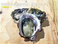 福岡県糸島産岩牡蠣10個セット
