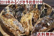 【予約販売ポイント10倍】福岡県糸島産みるくがき20個セット