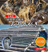 【予約販売】みるくがき30個【送料無料】福岡県糸島産牡蠣カキ殻付き生食生牡蠣2020年11月21日㈯にお届け予定