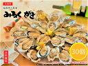 みるくがき Lサイズ 30個 牡蠣 かき 殻付き 生食可 福