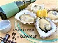 父の日贈り物岩牡蠣と日本酒「糸島名産」セット糸島サウンドMサイズ4個【送料無料】