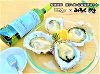 父の日贈り物岩牡蠣とワインベストオイスターセット糸島サウンドMサイズ4個【送料無料】