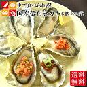 生食用 殻付き牡蠣 国産 兵庫県産 6個入×2袋 12個 オ