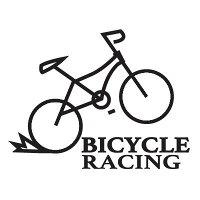 応援タトゥーシール 自転車 50×90のシートにタトゥーシールが2枚付いています。