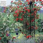【アイアン製トレリス】【Classic Garden Elements】Oberisk2(オベリスク II )R4