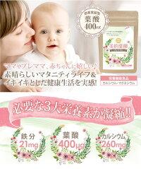 サプリメント、葉酸、カルシウム、鉄、ミネラル、妊婦、婚活中、赤ちゃん、ビタミン、美的葉酸プレミアム