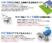防犯カメラSDカード録画対応スマートフォン・Wi-Fi対応録画装置が不要です!動き感知防水上書き録画赤外線LED暗視レコーダー不要【NC100】【secuOn】【RCP】