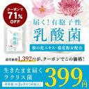 【エントリーで500円以上購入!100ポイントGET】乳酸菌...