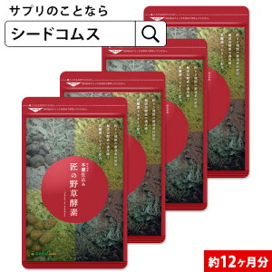 匠の野草酵素(約12ヶ月分)【DEAL3205】【DEAL3206】【DEAL3201】【DEAL3204】