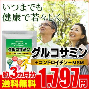 2型コラーゲン配合グルコサミン&コンドロイチン&MSM 約3ヵ月分 【seedcoms_D】3D【ブラックフライデー】