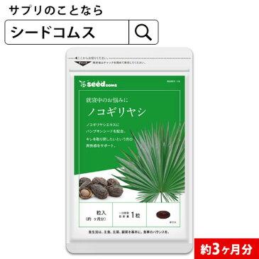 ノコギリヤシ 約3ヵ月分 【seedcoms_D】3D【ブラックフライデー】