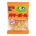 味覚糖 バターボール 104g×10個