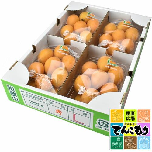 フルーツ・果物, びわ  4 1(400g)