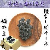 【茶箱】種なしピオーネ(1kg以上)【チルド送料無料】