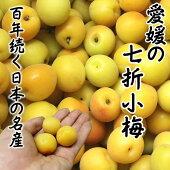 【愛媛県産】七折小梅約4kg【送料無料】日本一の小梅