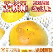 【愛媛県産】太秋柿約2kg以上【2箱以上送料無料】