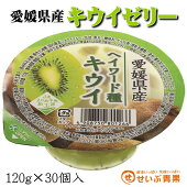 愛媛県産キウイゼリー(ヘイワード種)30個入