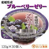 愛媛県産ブルーベリーゼリー30個入送料無料(一部地域を除く)