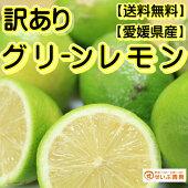 【訳あり】/愛媛県産ハウスレモン約5kg/(れもん)【ワックス・防腐剤不使用】【全国送料無料】