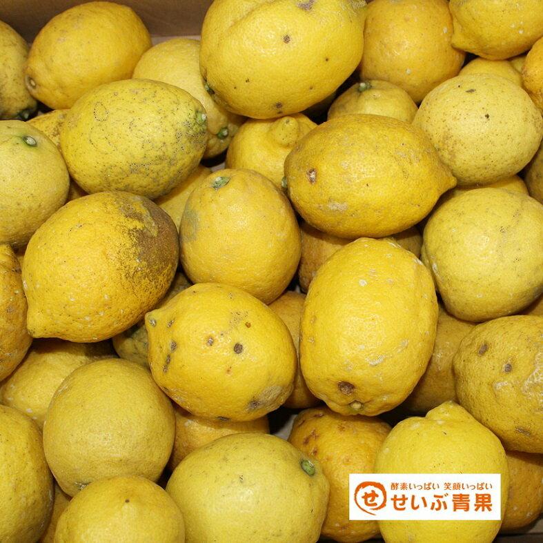 【訳あり】国産 レモン 約10kg 愛媛県産(れもん)【ワックス・防腐剤不使用】