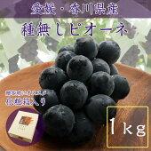 【化粧箱】種なしピオーネ(1kg以上)【チルド送料無料】