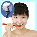 コロコロと転がすことで歯垢を除去!新感覚のオーラルケアブラシ!コロコロブラシ(歯ブラシ)