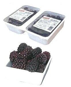 【シコリ】冷凍ミュールホール 1kg<桑の実>