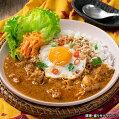 99841【MCC】マレーシア風チキンカレー1食(160g)【世界のカレーシリーズ】